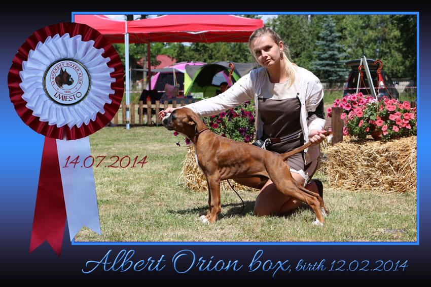 Albert-Orion-Box-modra-web