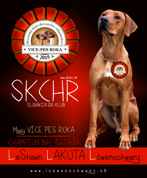 Lashawn rok 2015 SKCHR copy