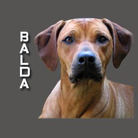 BALDA 2
