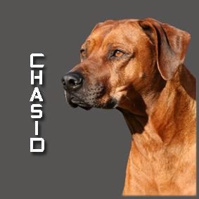 CHASID