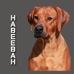 Habeebah 2